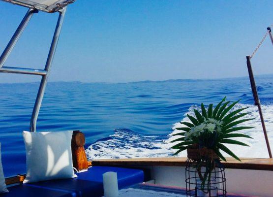 Vourvourou Cruise - Albatros