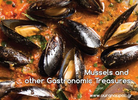 Mussels and Other Gastronomic